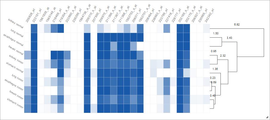 Heatmap Clustering